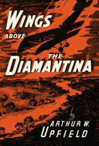 WIngs_Above_the_Diamantina